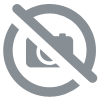 Plaque de porte  personnalisable Pirates